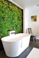 A Sacred Space to Bathe by siol - contemporary - bathroom - san francisco