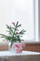 Tiny Christmas tree - eclectic -  - other metro