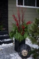 Christmas in Edmonton, Alberta Canada - contemporary - exterior - edmonton