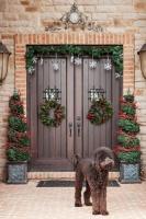 Holiday Decor - contemporary - entry - columbus