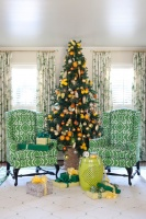 Tobi Fairley Holiday - traditional - living room - little rock