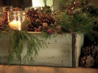 Dawn Mohrmann's Nature Inspired Mantel - traditional - family room - new york