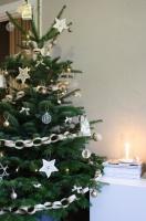 Christmas Tree -  - living room - amsterdam