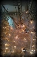 COMFORT & JOY @ FOCAL POINT - contemporary - living room - miami