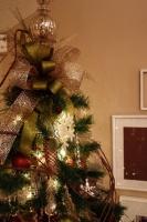 Living room Christmas 2010 -  -  - kansas city