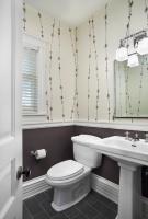 Hyde Park Renovation - traditional - bathroom - chicago
