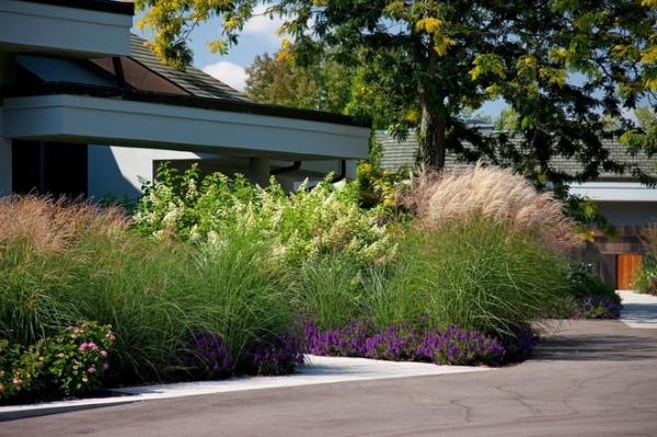 Modern Garden Designs For Modern Homes Decor Ideas